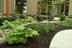 Image result for pictures of a garden with black mulch vs brown mulch