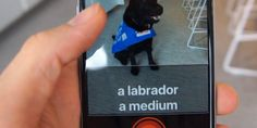📱 This #app helps the #visuallyimpaired identify what's around them. And it´s extremely accurate. 📱