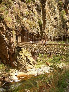 Crossing the river in Karangahake Gorge, Coromandel Peninsula, New Zealand.