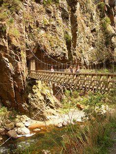 Crossing the river in Karangahake Gorge, Coromandel Peninsula, New Zealand.