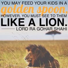 The Official MFI® Blog: Quote of the Day: 'You may feed your kids in a golden spoon, however, you must see to them like a lion.' - Lord Ra Gohar Shahi #parenting