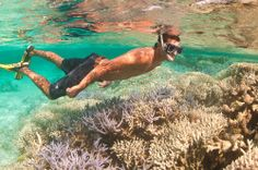 Coral bleaching Coral bleaching events in 1998 and 2002 had a significant impact on the Great Barrier Reef. Bleaching was acknowledged to have been more severe in 2002. Aerial surveys taken at that time showed that almost 60% of reefs experienced bleaching of some degree.