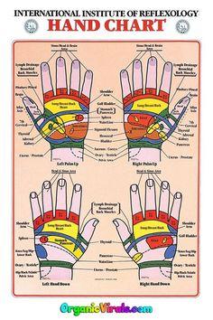 Essential Oil Chart, Foot Chart, Acupressure Points, Reflexology Points, Foot Reflexology Chart, Acupuncture Points, Reflexology Massage, Hand Massage, Alternative Therapies
