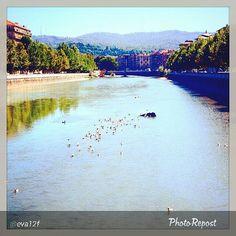 #Torino raccontata dai cittadini per #InTO Foto di @eva12f #turin #torino #dora #fiume #river #goodmorning #torinoècasamia #instaturin #instagood #instamood #igers_torino #postcard