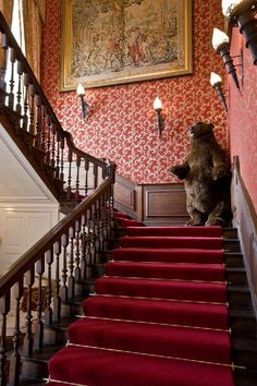 Main Staricase At Holt Castle Malvern With Ever Watchful Big Bear Hes Not