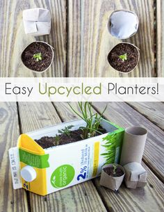 Easy Upcycled Seed Starters - Perfect for your organic seeds and sprouts. Gardening in small spaces is a great way to bring fresh ingredients into your diet. Try these easy upcycled planters (perfect for herb garden!) to get you started.