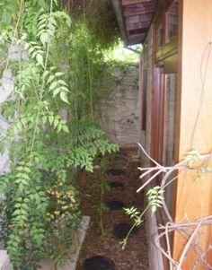 corredor no jardim / quintal do apartamento - garden shed, garden structure, greenhouse, maison