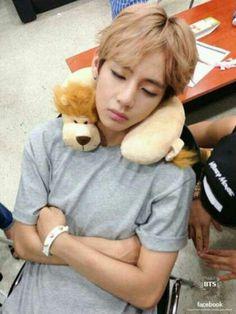 Awww XD haha V's little lion plushy!! I loved his lion plushy ^^