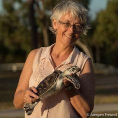 Virologist Dr. Ellen Ariel holding Nemo, the 18 month old green sea turtle at…