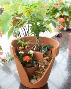 turn your broken pots into a staggered fairy garden
