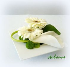Epuré en vert et blanc : ARUM ET GERBERAS