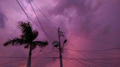 Pink Sky, Tumblr, Tumbler