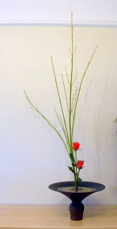 Junko's Ikebana class, Shoka style. Shoka style looks very simple but said to be the most difficult of all Ikebana styles.There are 2 types of Shoka. One is the classical Shoka Shofutai & the more modern style of Shoka Shimputai. Shoka style expresses the feeling of life, growing energy & the natural beauty of the materials. To achieve this it is important that the arranger understands how the plants grow in nature: the natural environment, characteristics & habitat. www.ikebanabyjunko.co.uk