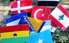 Flag fra alverdens lande