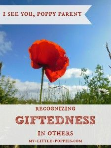 Wow this is Annie! I See You, Poppy Parent {Recognizing Giftedness in Others} On being able to see the signs of giftedness in those around you, and making gifted connections. Parenting Toddlers, Foster Parenting, Good Parenting, Parenting Hacks, Gifted Education, Special Education, Parent Gifts, Kids Gifts, Twice Exceptional