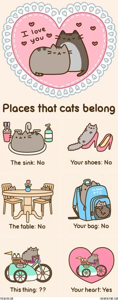 pusheen cat - Google Search