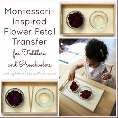 Use old Mother's Day flowers to prepare a Montessori-inspired flower petal transfer activity (very simple to prepare). Great for the child's concentration and coordination ... and a wonderful sensory experience, too.