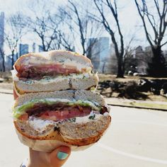 Carly's Guide To The Best NYC Bagels 2