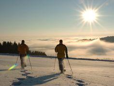 Winterimpressionen im Hotel Angerhof****S Hotels, Mountains, Sport, Nature, Travel, Bavaria, Gourmet Cooking, Tourism, Viajes