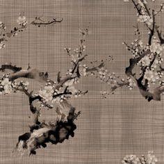 Undressing Surfaces - Hanami
