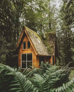 """voiceofnature: """" Whimsical cabins by Christopher Kerksieck """""""