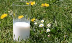 Die Zubereitung von Abendbrei mit Pre-Milch oder Muttermilch ist eigentlich nicht kompliziert, wenn ihr dieser Schritt-für-Schritt-Anleitung folgt.
