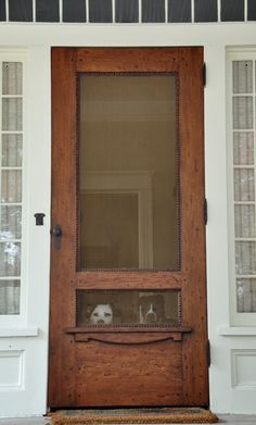 Screen Door with doggie peek through is good, then they are not ruining the screen jumping up to look
