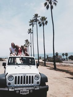 Jeeps and Palms