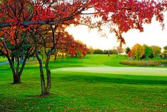 River Falls Golf Club, in River Falls, WI, opened 88 years ago and has a par of 72! #GolfCourseOfTheDay | Rock Bottom Golf #RockBottomGolf