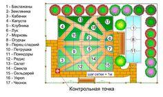 Планировка огорода. 6 главных принципов планировки приусадебного участка.