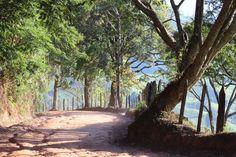 Caminho do Pico da Bandeira em Maria da Fé - Minas Gerais - Brasil   | Flickr - Photo Sharing!