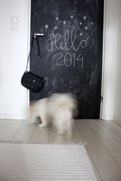 chalkboard door ~ we have old wood doors with beveled sections, how fun would that be?