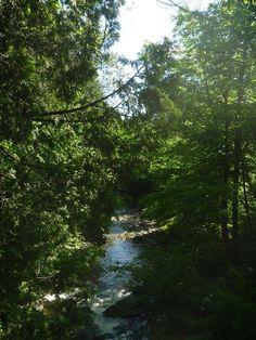 <p>Prenez le temps d'écouter le chant du ruisseau Hillhurst (aujourd'hui ruisseau Veillette).</p>