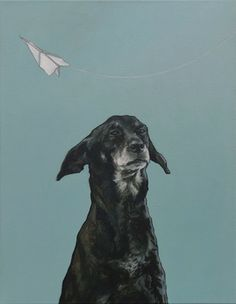Iet Langeveld.... me encanta  !!es que se parece muchooo a violeta , mi perra !