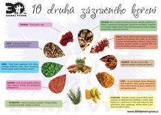 10 druhů zázračného koření - 30ti denní výzva Czech Recipes, Korn, Detox, Life Is Good, Ale, Healthy Lifestyle, Herbs, Gluten, Life Is Beautiful