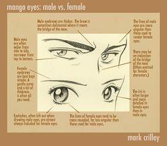 Eyes tips