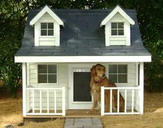 Chalet 2 Now that's living in style.....Woof!!!!!