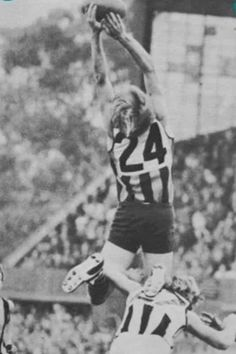 Peter Knights Australian Football League, Hawks, Knights, Nike Logo, Legends, Action, Sports, Hs Sports, Group Action