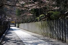 On the way up to Konpira-san in Kagawa Prefecture (Shikoku), especially beautiful during cherry blossom season. :)  I visited in 2011 (yes, shortly after THE quake).  Have you been there yet? :)