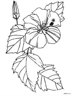 sagome fiori di pesco - Cerca con Google