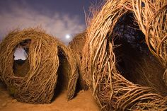 """Patrick Dougherty's installation """"Childhood Dreams"""" made of willow branches at the Desert Botanical Garden"""