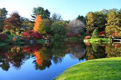 The Azalea Gardens in Northeast Harbor, Maine....beautiful!