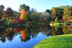 The Azalea Gardens in Northeast Harbor, Maine....beautiful!