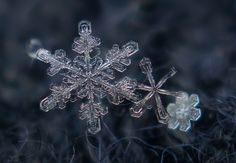 Microview of a snowflake.