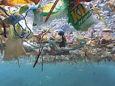 The Pacific Ocean as garbage dump . . .