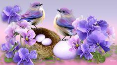 Image result for Beautiful Spring Desktop Wallpaper Birds