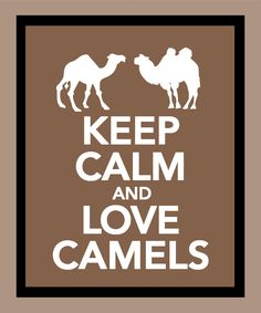 Keep Calm and Love Camels Print - via Etsy.