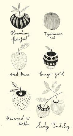 Apple guide by Katt Frank Apple Illustration, Portrait Illustration, Illustration Sketches, Food Illustrations, Pomes, Design Floral, Tinta China, Art Graphique, Illustrators
