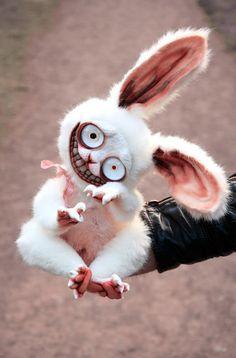 Crazy Bunny von GakmanCreatures auf Etsy Eye make up Crazy Bunny Cute Fantasy Creatures, Cute Creatures, Mythical Creatures, Creepy Toys, Creepy Cute, Creepy Stuff, Baby Animals, Cute Animals, Alice In Wonderland