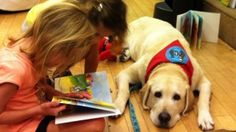 Yellow Lab, Therapy Dog is Key Book Character | Lynette Endicott